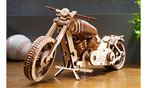 """""""Bike VM-02"""" Model"""